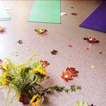 Sudbury yoga studio